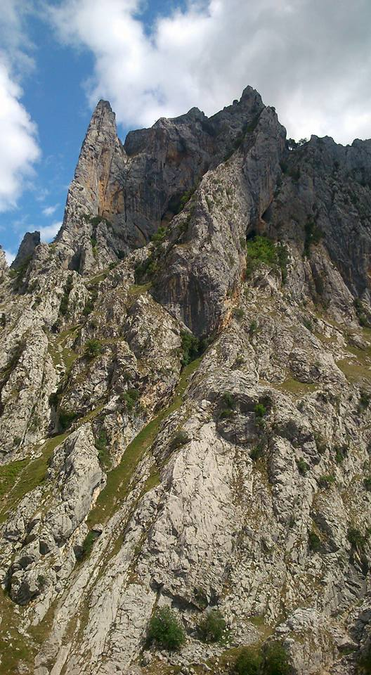 Picos de Europa 2
